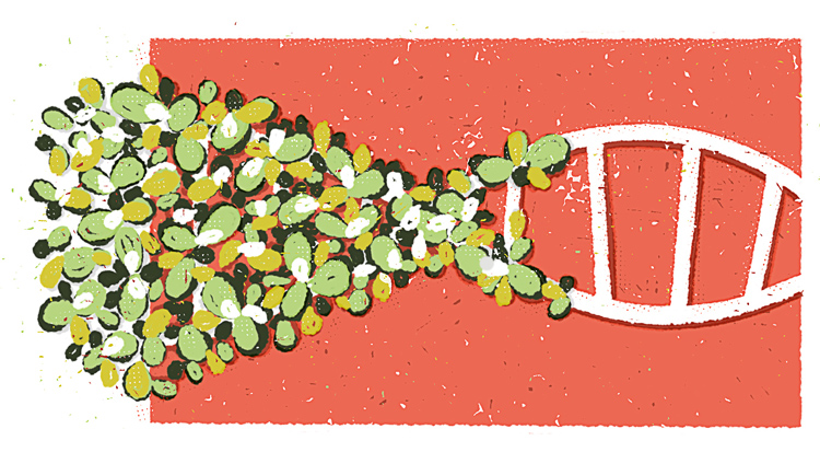 Illustration about plants' DNA